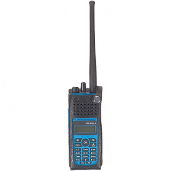 PMLN5606
